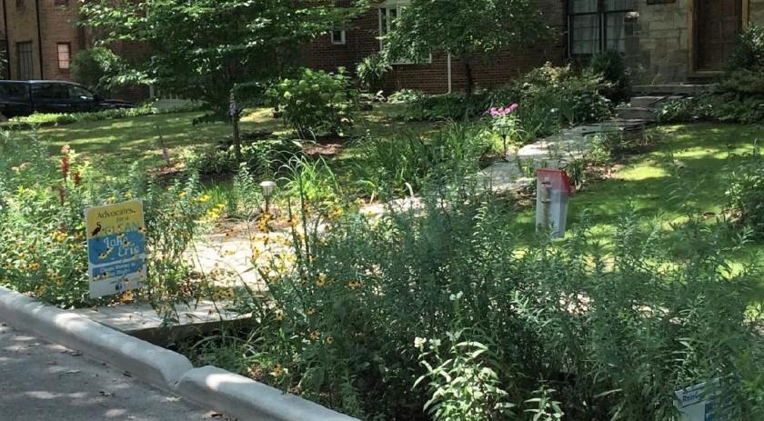 peggy daly-masternak garden v2