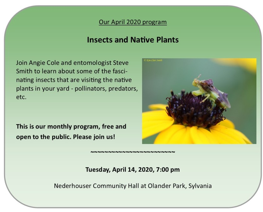 April 2020 program for website - Insects and Native Plants