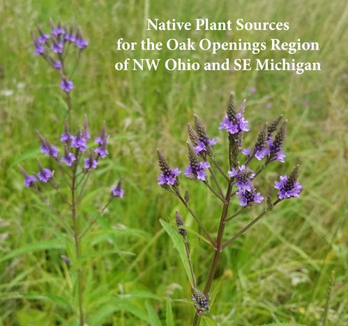 Native Plant Sources in NW OH