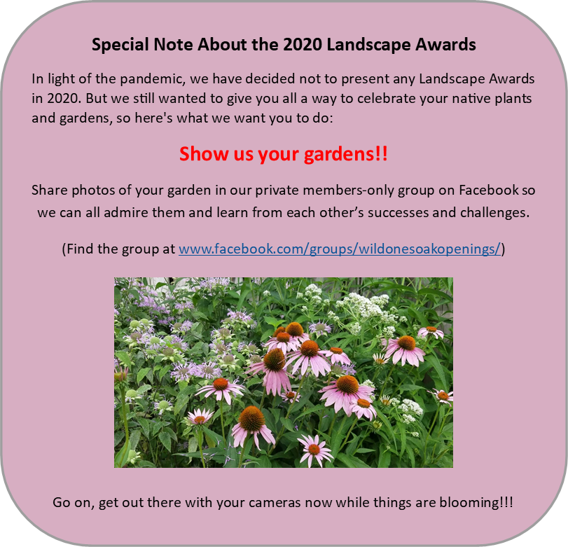 Show Us Your Gardens - sub for 2020 landscape awards